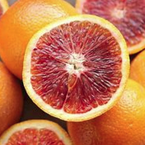 Greka Foods | Authentic Greek Jam | Blood Oranges